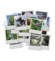 Кассеты для Polaroid